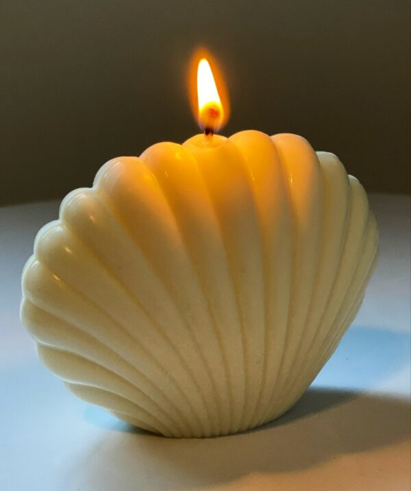 soy candle shell